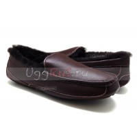 MENS Ascot Leather NEW Chocolate